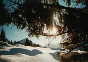 Winterday