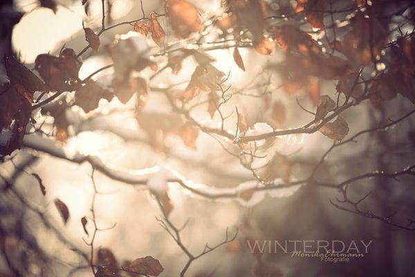 *winterday*