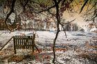 Winterdreams