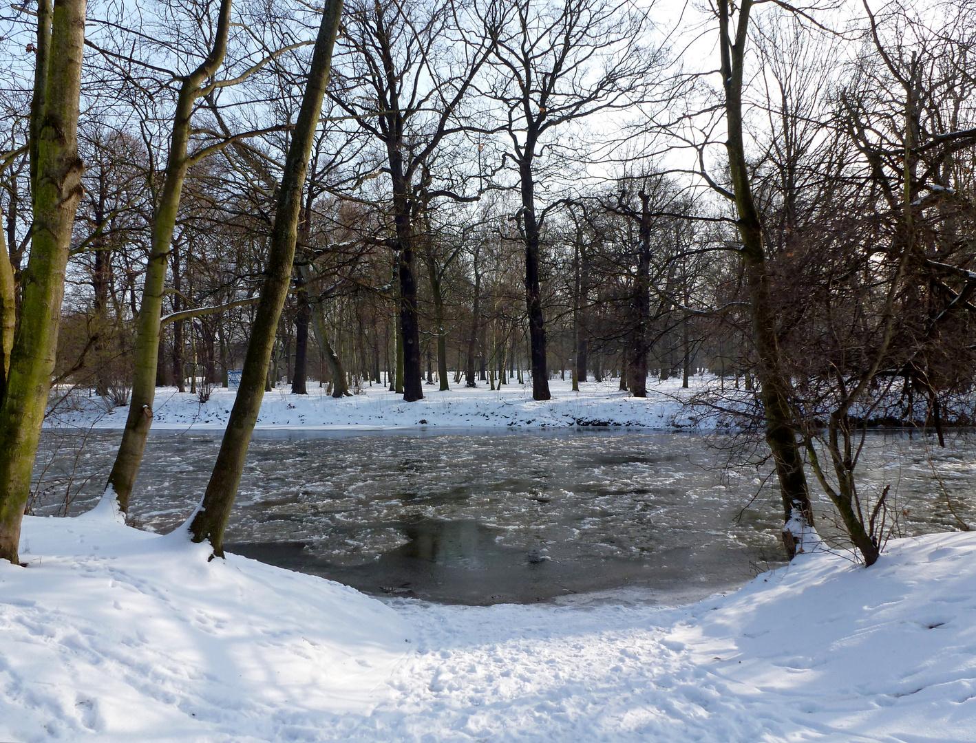 Winterdreams (4)