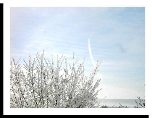 Winterdreamz