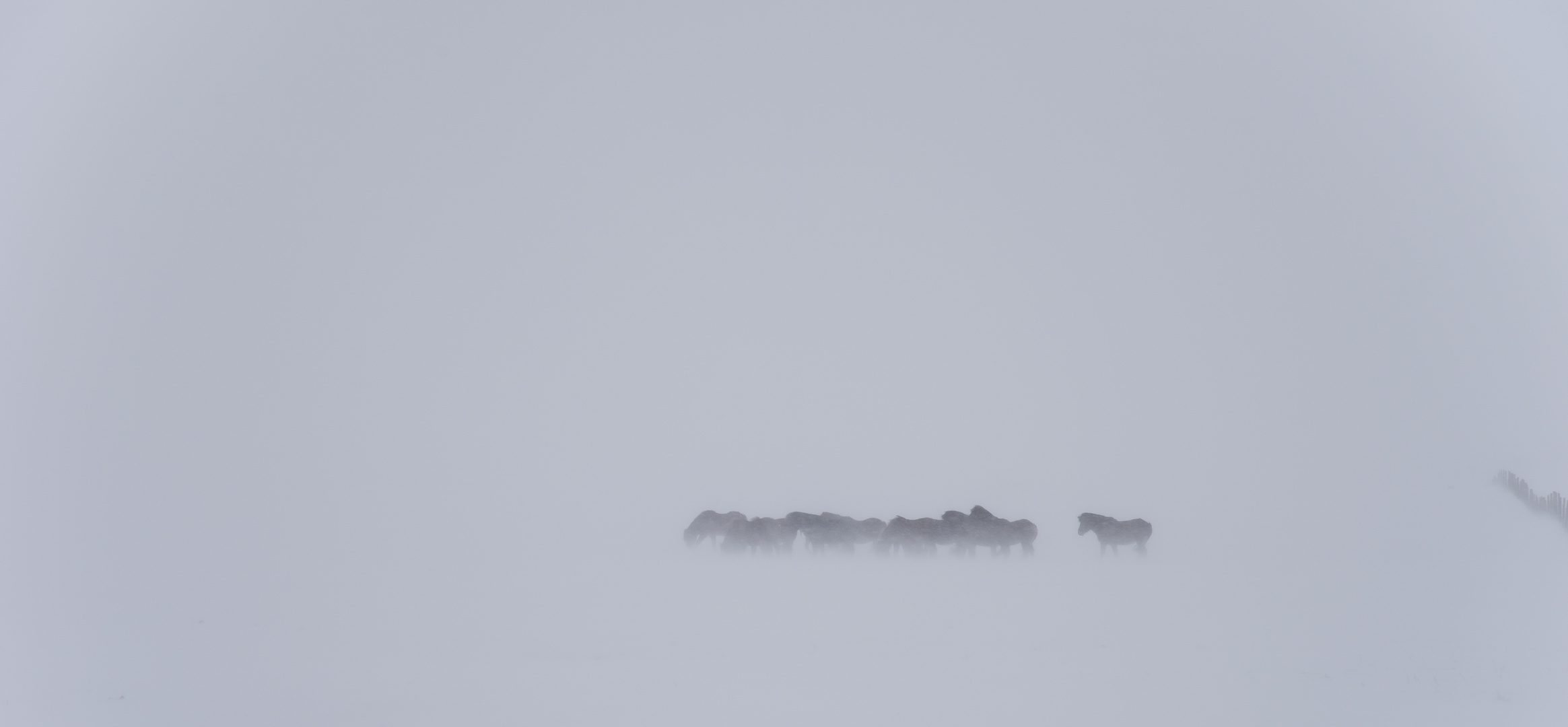 ~~ wintereinbruch ~~