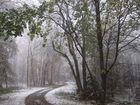 - Wintereinbruch-