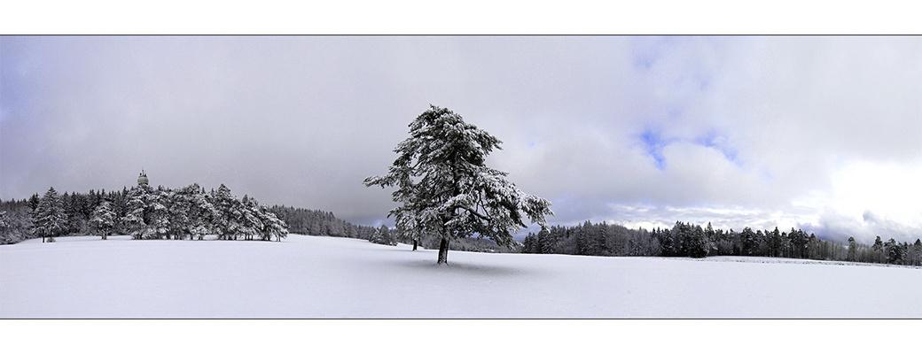 Wintereinbruch auf dem Randen