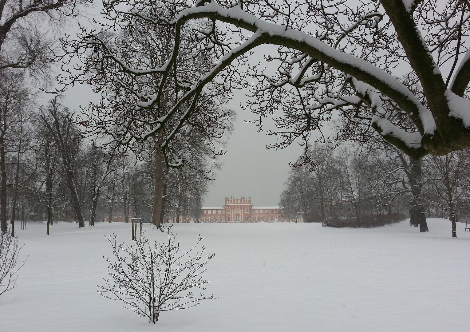 Wintereinbruch im Biebricher Schlosspark 1