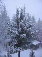 Wintereinbruch im Erzgebirge