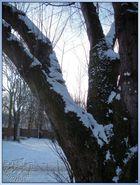 Wintereinbruch, und...............