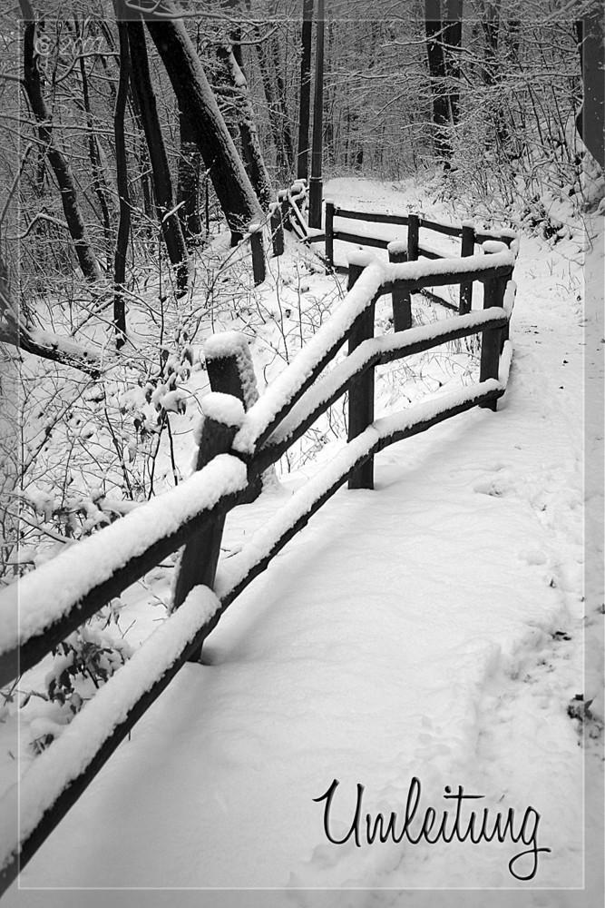 Wintereinbruch_03