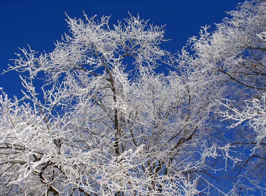 Winterfarben