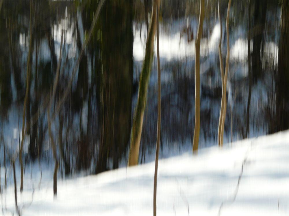 Winterfarben von Monika Hütter