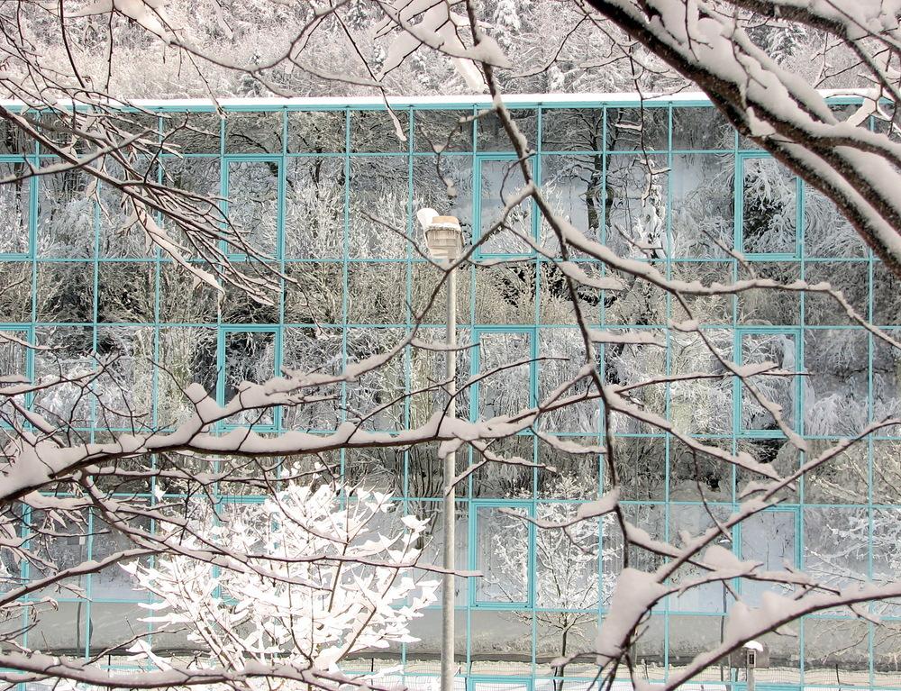 Winterfassade