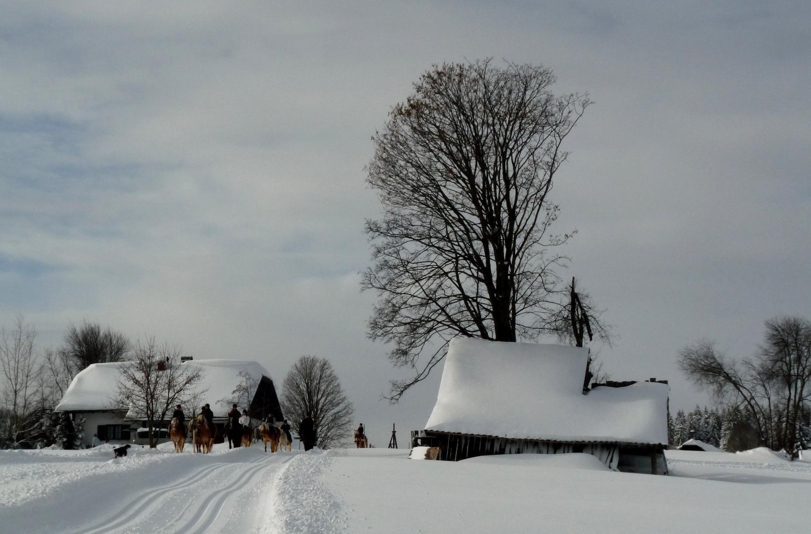 winterfreude ...