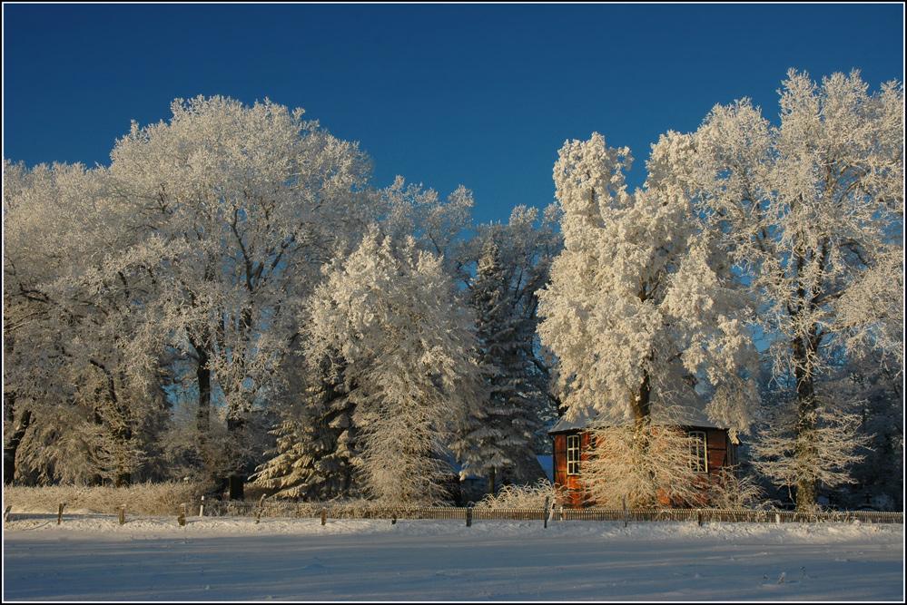 Winterfreude.......