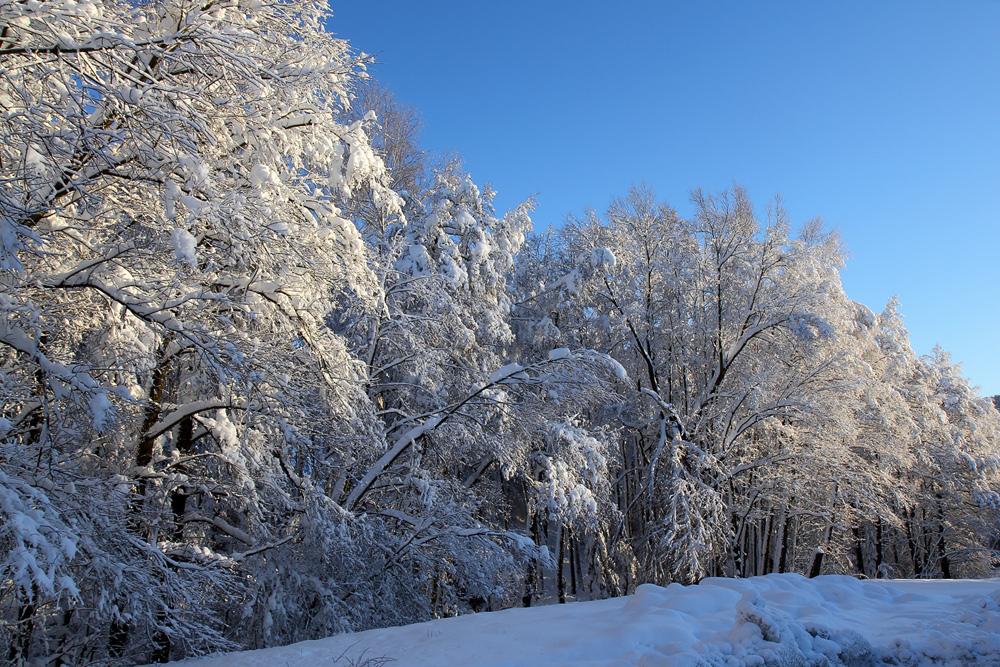 Winterfreuden 8