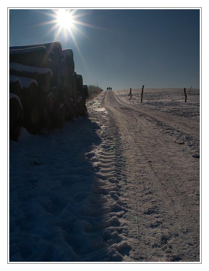 Winterfreuden I