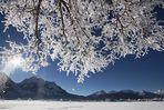 Winterfreuden im Ostallgäu