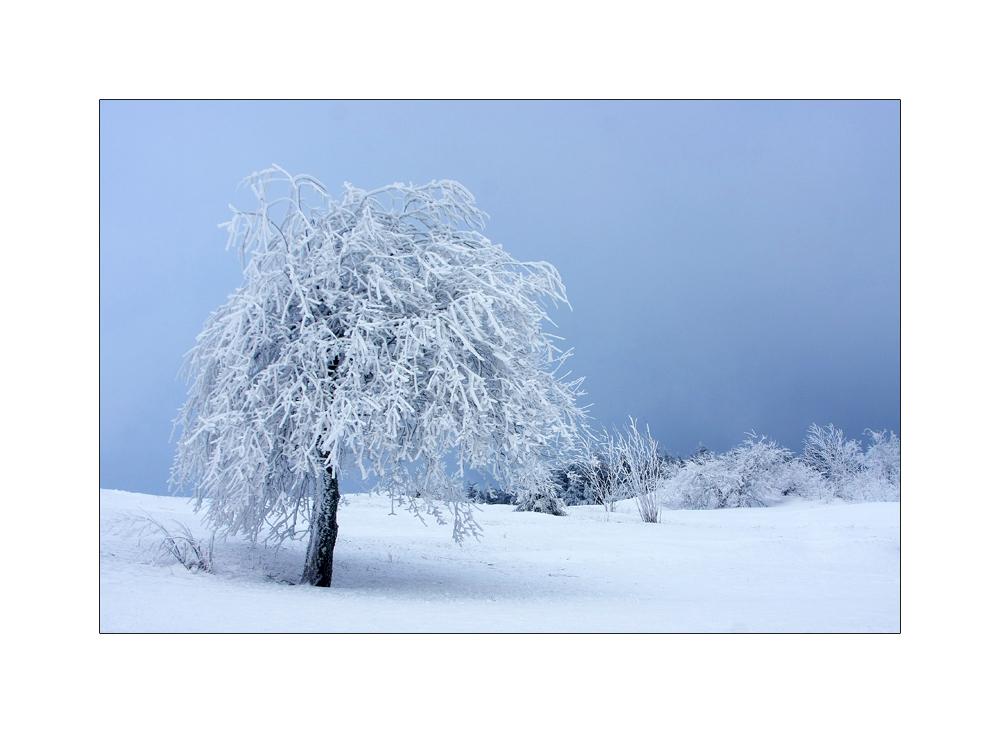 Winterfrisur