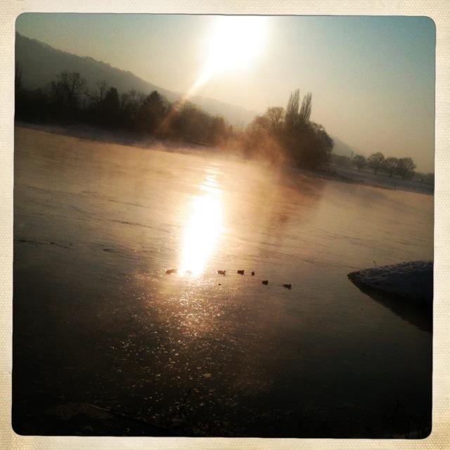 Winterfrühlingsmorgen