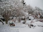 Wintergarten...