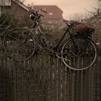 Wintergarten III