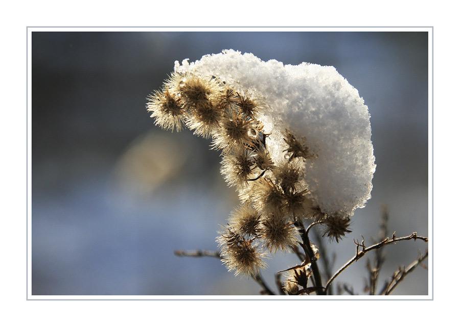 Wintergedanken I