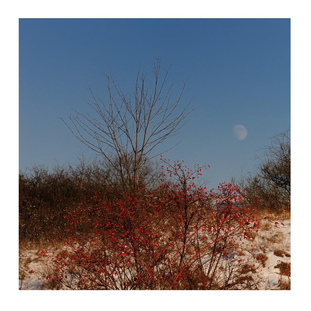 wintergeschichten (10)