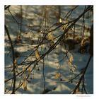 wintergeschichten (5)