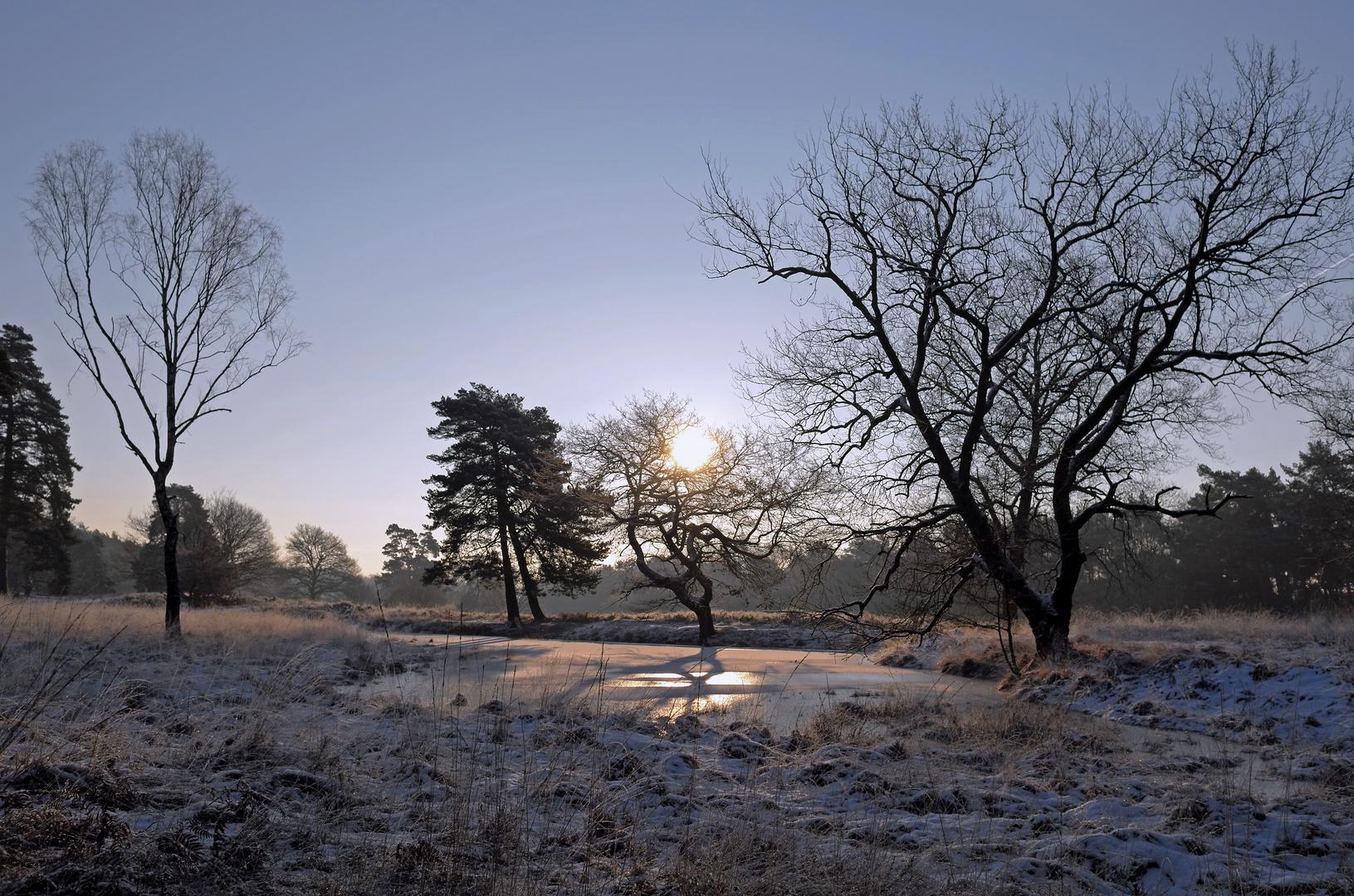 Winterheide