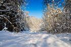 Winteridylle 1
