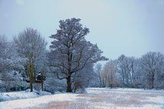 Winteridylle 3