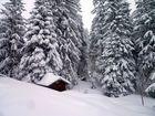 Winteridylle im Salwideli ...
