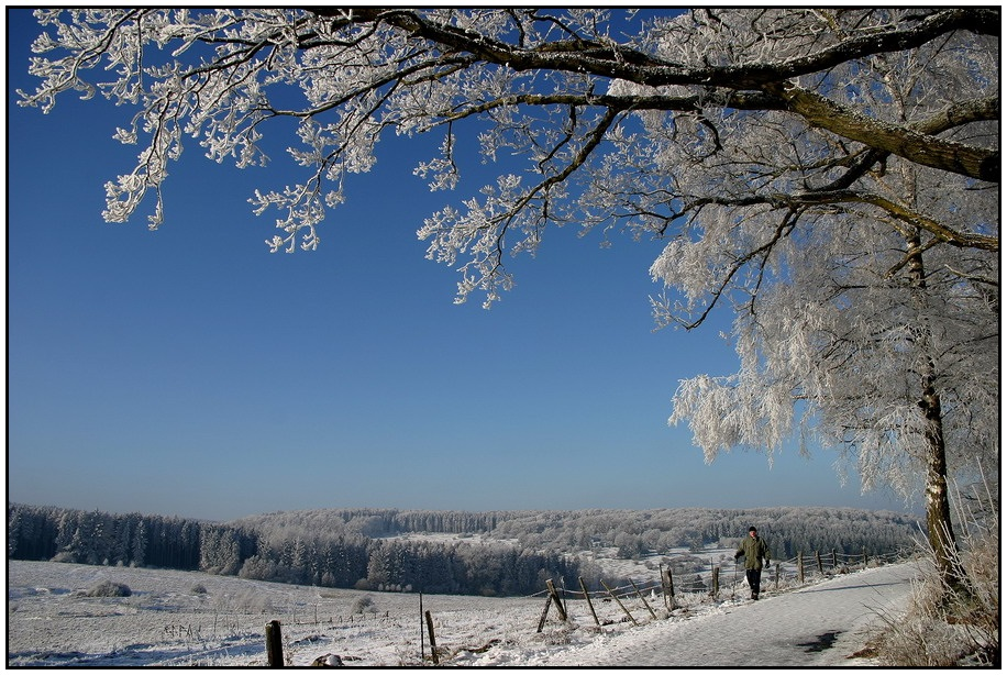 Winterimpresionen (1)