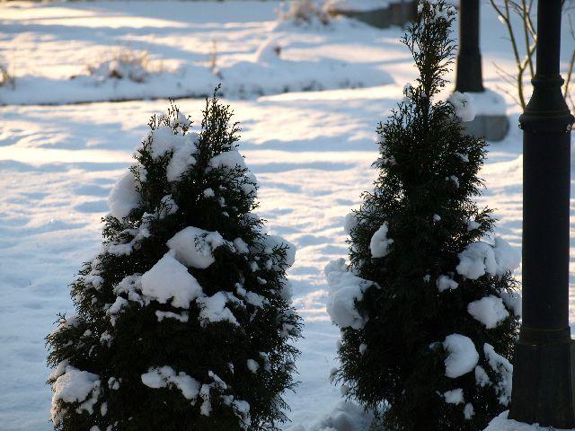 Winterimpression 3