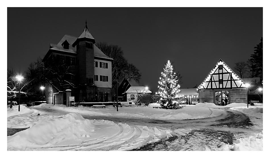Winterimpression in Schwaig 04