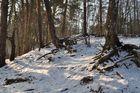 Winterimpression-Teil 1