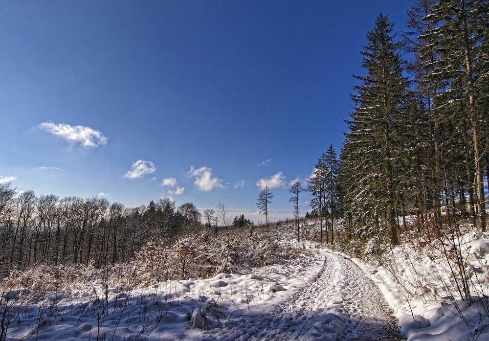 Winterimpression VII