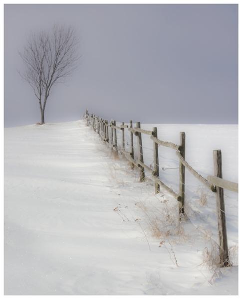 Winterimpressionen 04