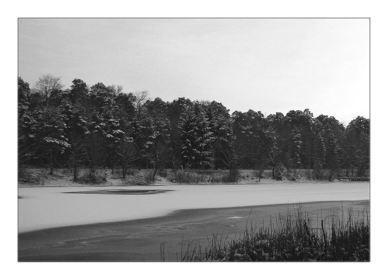 Winterimpressionen-2