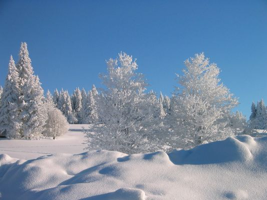 Winterimpressionen 2005