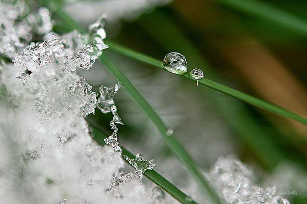 Winterimpressionen 2014.1