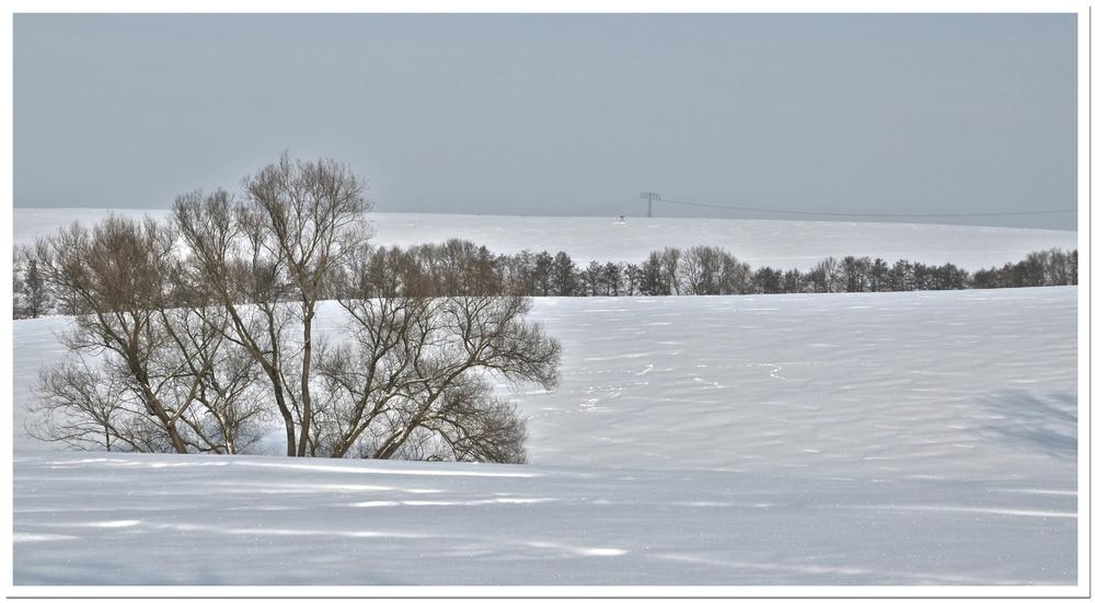 Winterimpressionen 3