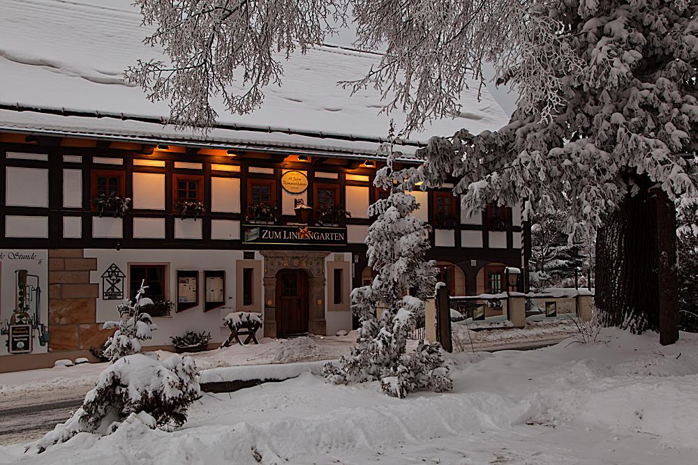 Winterimpressionen (8)