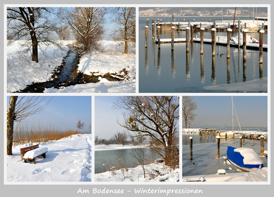 Winterimpressionen am Bodensee