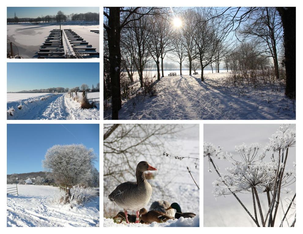 Winterimpressionen am Kemnader See