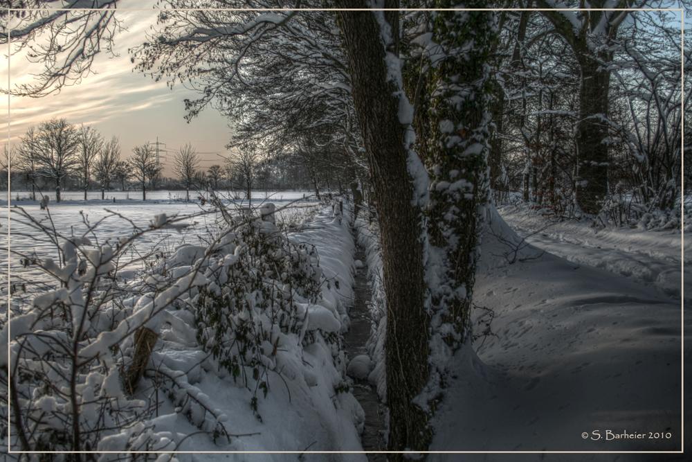 Winterimpressionen aus der Heimat