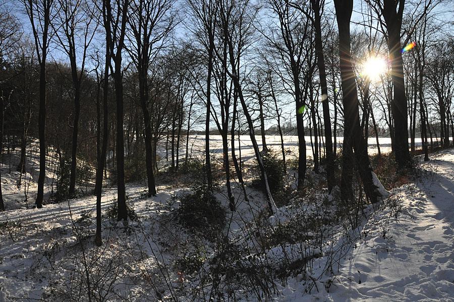 Winterimpressionen aussm Pott 2
