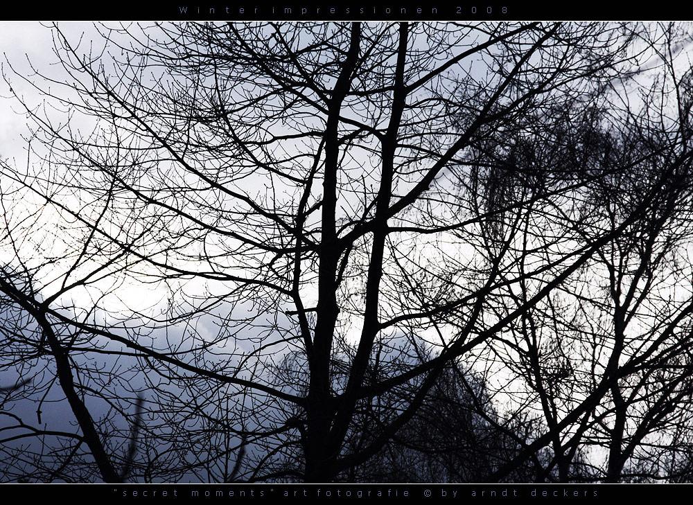 ... Winterimpressionen ...