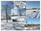 Winterimpressionen im Westpark