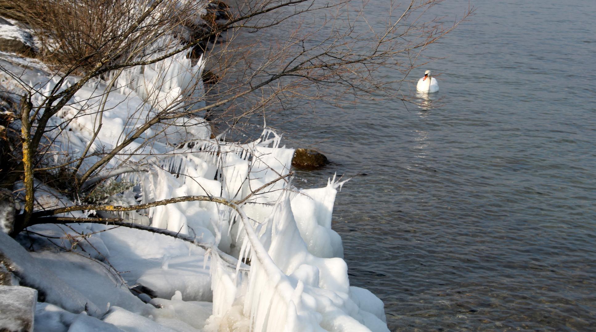 Winterimpressionen / impresiónes invierno / Impressions d'hiver..05
