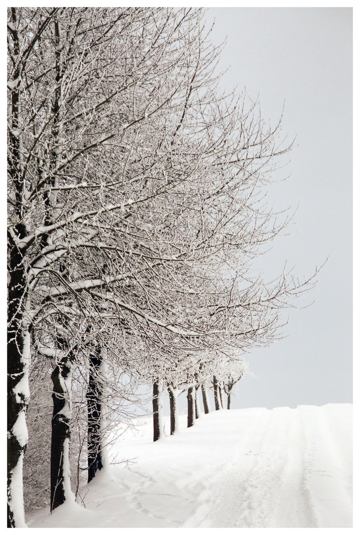 Winterimpressionen IV